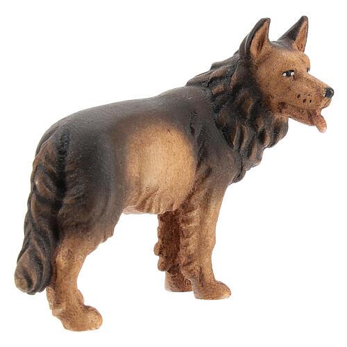 Perro pastor madera pintada belén Kostner 12 cm 3