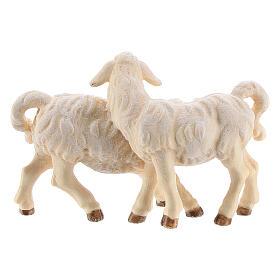 Gruppo di agnelli legno dipinto presepe Kostner 12 cm s3