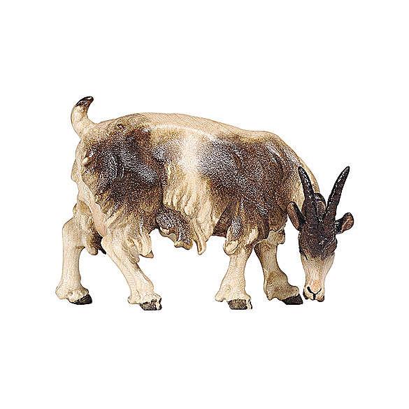 Chèvre qui mange tête à droite bois peint crèche Rainell 9 cm Val Gardena 4