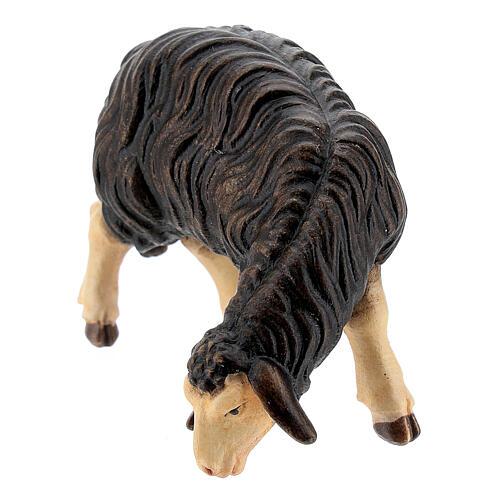Mouton noir qui mange bois peint crèche Rainell Val Gardena 11 cm 2