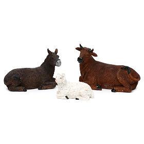 STOCK Nativity 20 cm, 11 pcs in wood s5