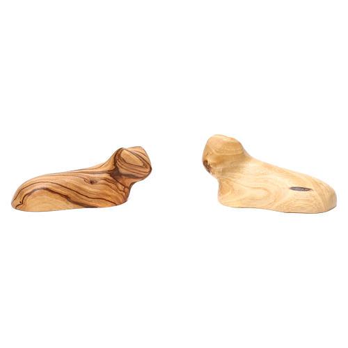 Capanna con presepe in ulivo di Betlemme 20x30x20 cm 5