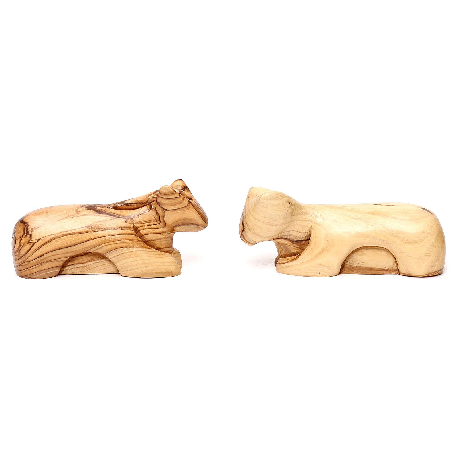 Set Natività 12 pezzi in legno d'ulivo di Betlemme 36 cm 4