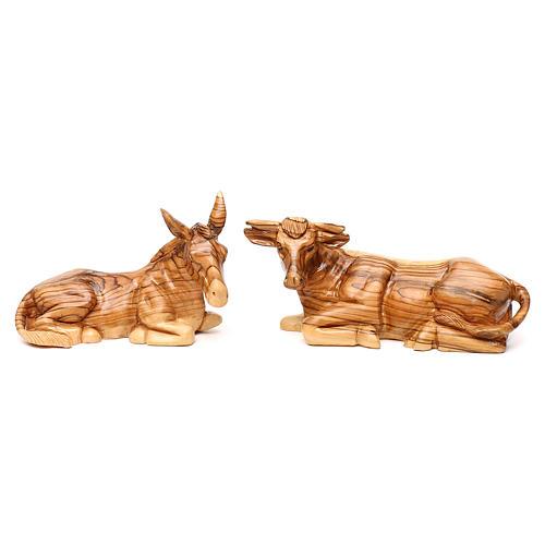 Presépio Completo 14 figuras madeira de oliveira Belém altura média 35 cm 6