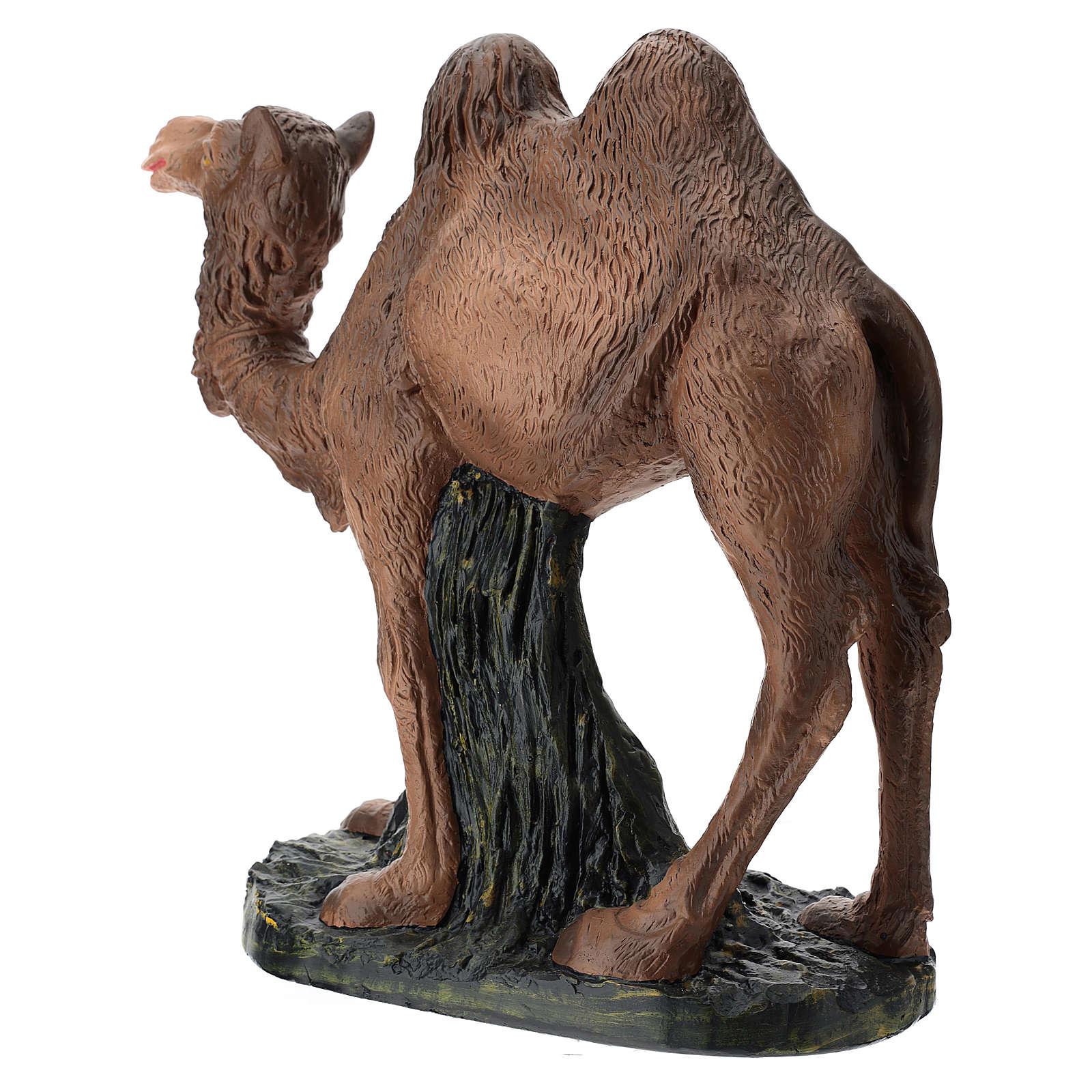 Statua cammello gesso 60 cm Arte Barsanti 4