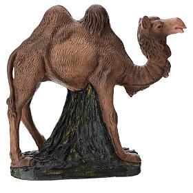 Statua cammello gesso 60 cm Arte Barsanti s1