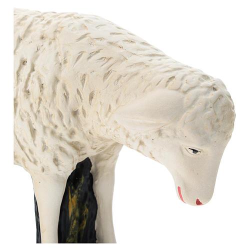 Estatua oveja agachada belén 60 cm Arte Barsanti 2
