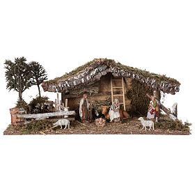 Cabane avec enclos et arbres 55x25x20 cm crèche 10 cm s1