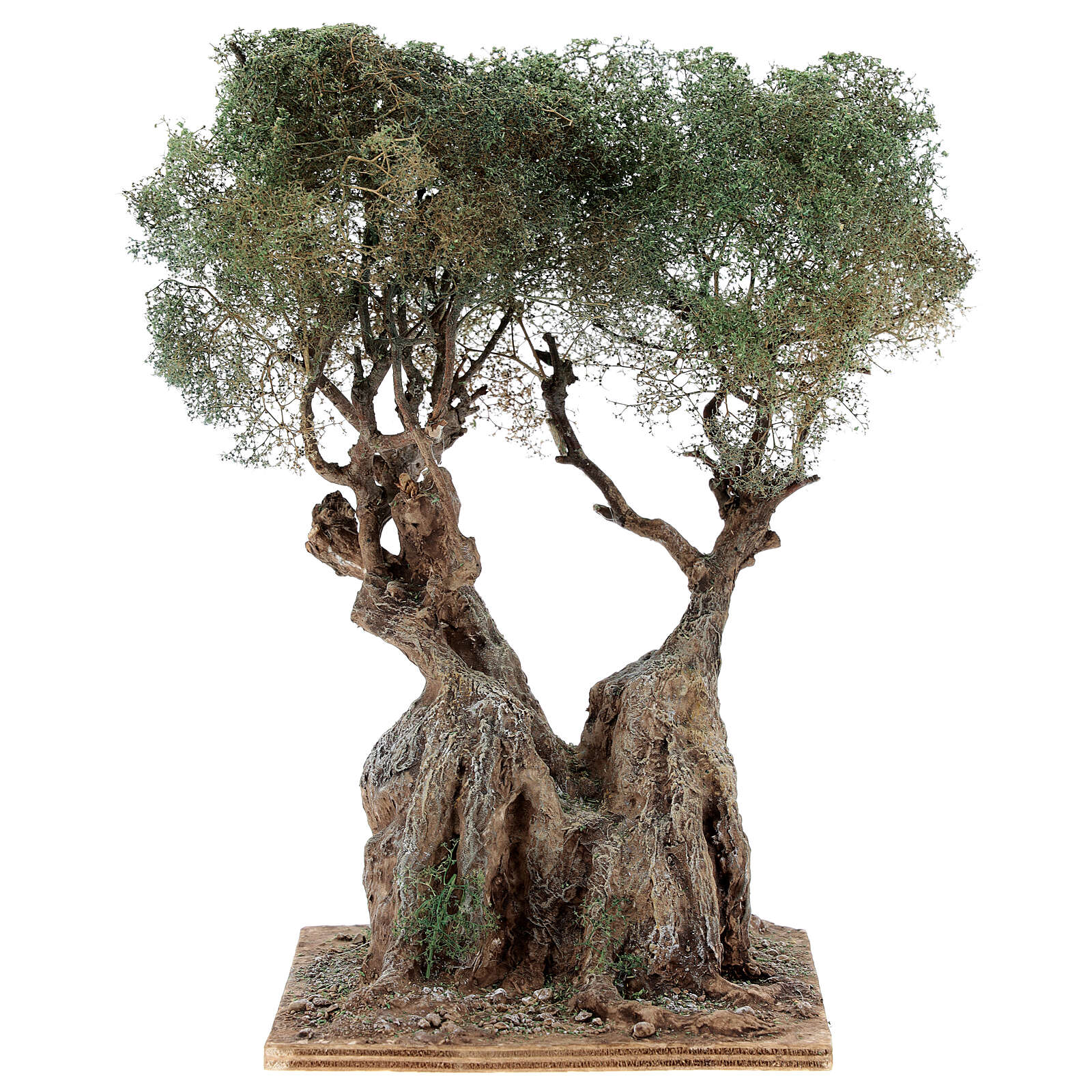 Realistic olive tree for Neapolitan Nativity scene real wood papier-mache h 20 cm 4