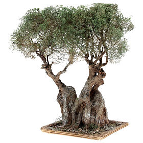 Realistic olive tree for Neapolitan Nativity scene real wood papier-mache h 20 cm s2