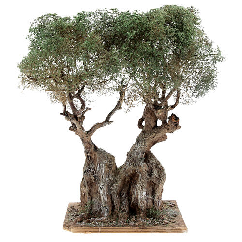 Realistic olive tree for Neapolitan Nativity scene real wood papier-mache h 20 cm 1