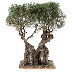Albero ulivo realistico presepe napoletano legno cartapesta h reale 20 cm s1