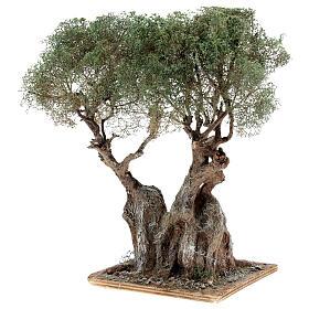 Albero ulivo realistico presepe napoletano legno cartapesta h reale 20 cm s2