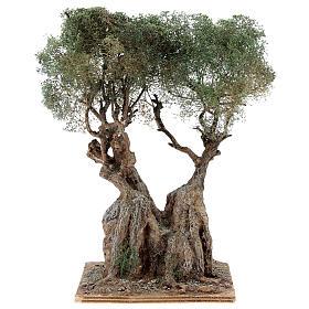 Albero ulivo realistico presepe napoletano legno cartapesta h reale 20 cm s4