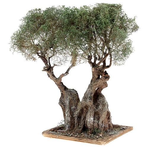 Albero ulivo realistico presepe napoletano legno cartapesta h reale 20 cm 2