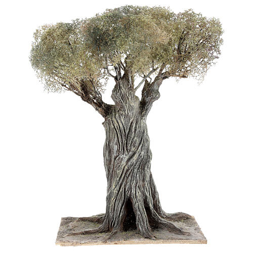 Miniature olive tree Neapolitan nativity scene 30 cm in papier mache wood 1