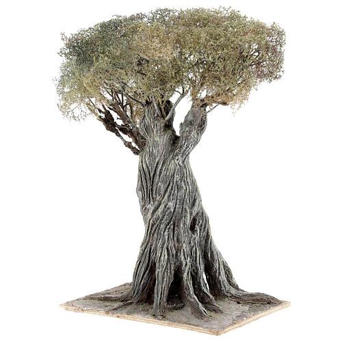 Miniature olive tree Neapolitan nativity scene 30 cm in papier mache wood 2