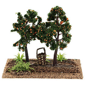 Huerto naranjas 15x15x10 cm belenes 6-8 cm s4
