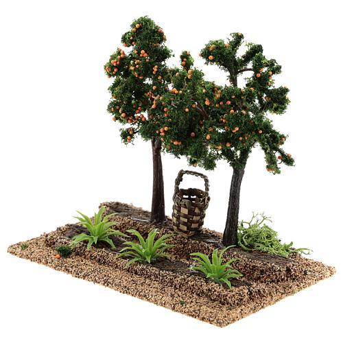 Huerto naranjas 15x15x10 cm belenes 6-8 cm 2