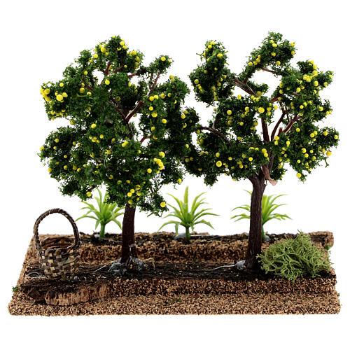 Frutteto limoni presepi 6-8 cm 15x15x10 cm 4