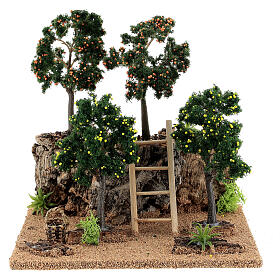 Citrus grove for Nativity scene 19x15x19 cm: setting with fruit trees s1