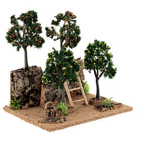 Citrus grove for Nativity scene 19x15x19 cm: setting with fruit trees s3