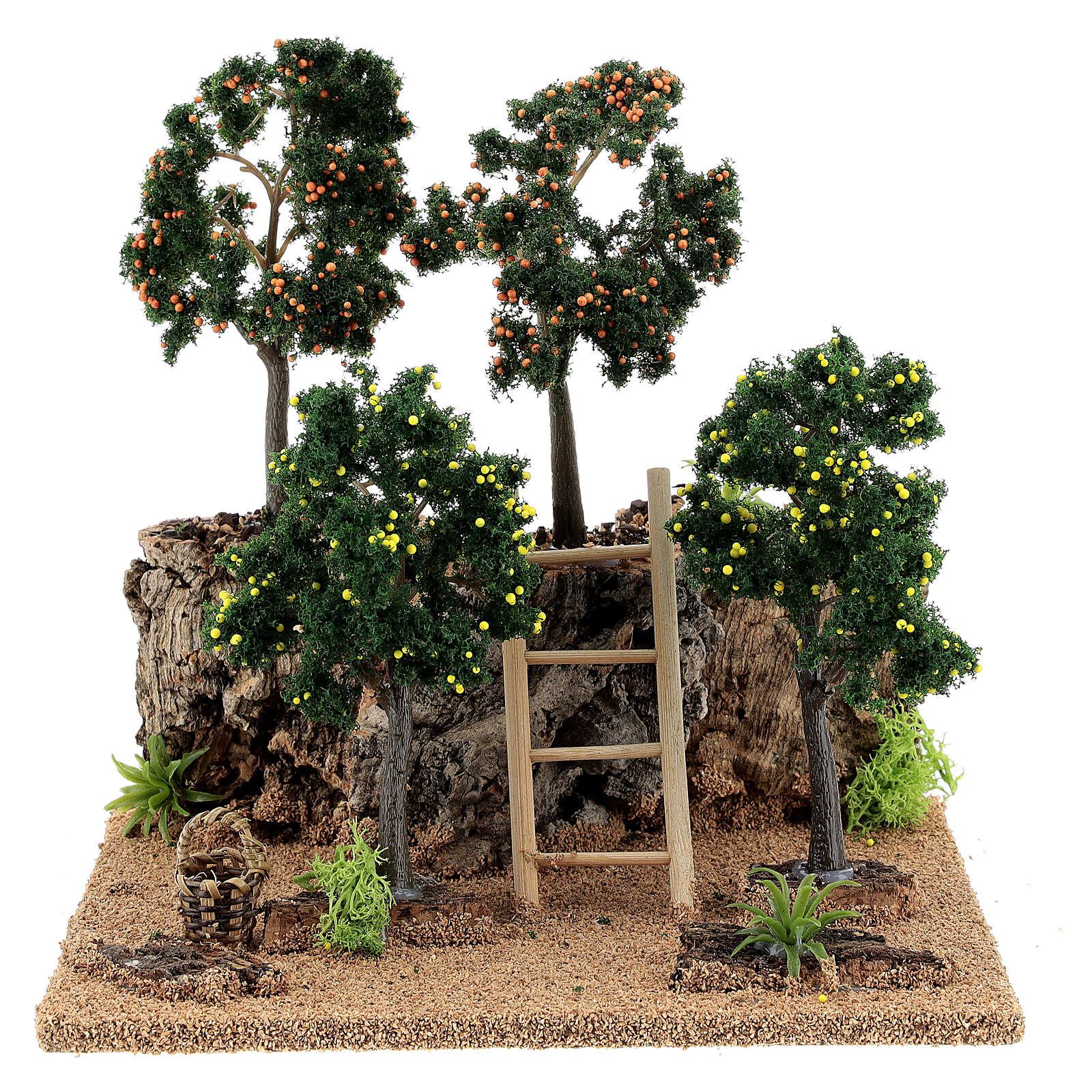 Miniature citrus grove 20x15x20 cm 4