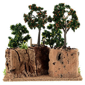 Miniature citrus grove 20x15x20 cm s4