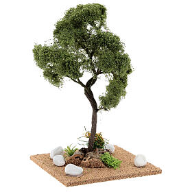 Tree for crib: elm, height about 25 cm s3