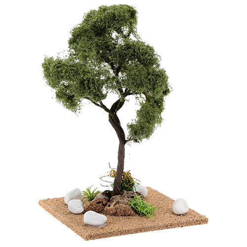 Tree for crib: elm, height about 25 cm 3