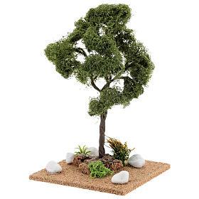 Miniature Elm tree h. 25 cm for nativity s2