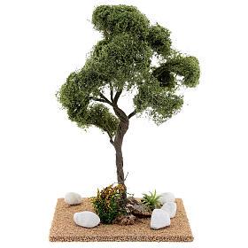Miniature Elm tree h. 25 cm for nativity s4
