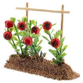 Horta com tomates miniatura resina 7x10x2 cm para presépio com figuras altura média 12-14 cm s2