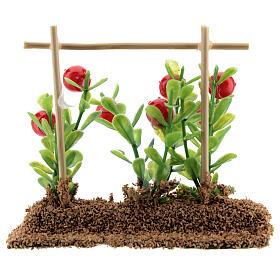 Horta com tomates miniatura resina 7x10x2 cm para presépio com figuras altura média 12-14 cm s3