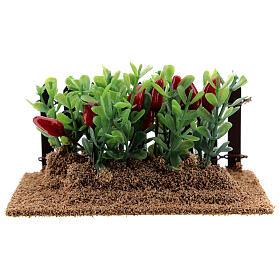 Horta com pimentas miniatura PVC para presépio com figuras altura média 12-14 cm s1