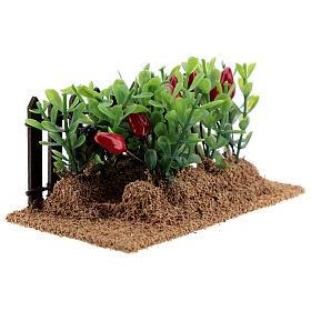 Horta com pimentas miniatura PVC para presépio com figuras altura média 12-14 cm s4