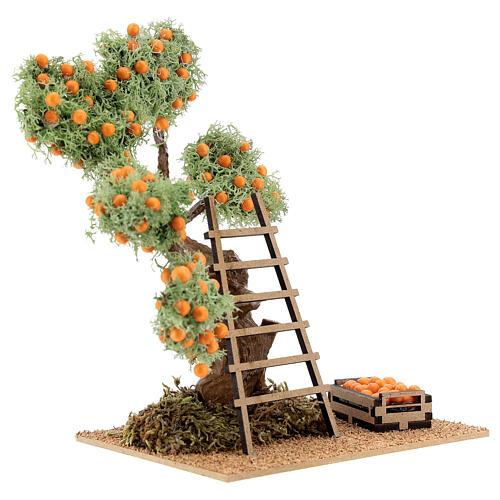 Albero arancio con cassetta 16 cm per presepe 8-10 cm 3