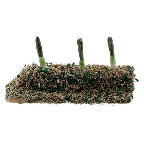 Striscia cipollotti resina presepe 8-10 cm 1