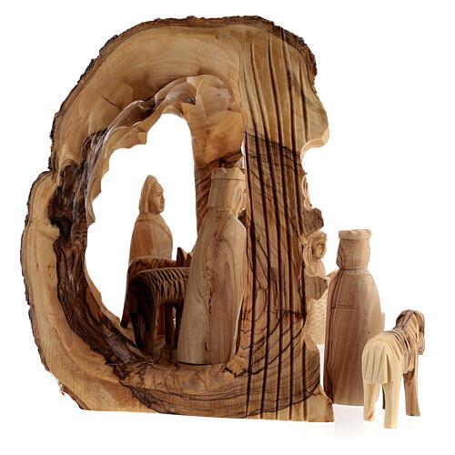 Capanna Natività tronco legno ulivo 11 statue 10 cm Betlemme 20x30x20 cm 6