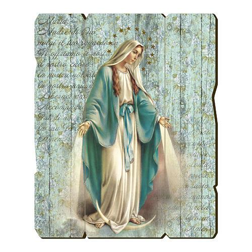 Quadro legno sagomato gancio retro Madonna Miracolosa 1