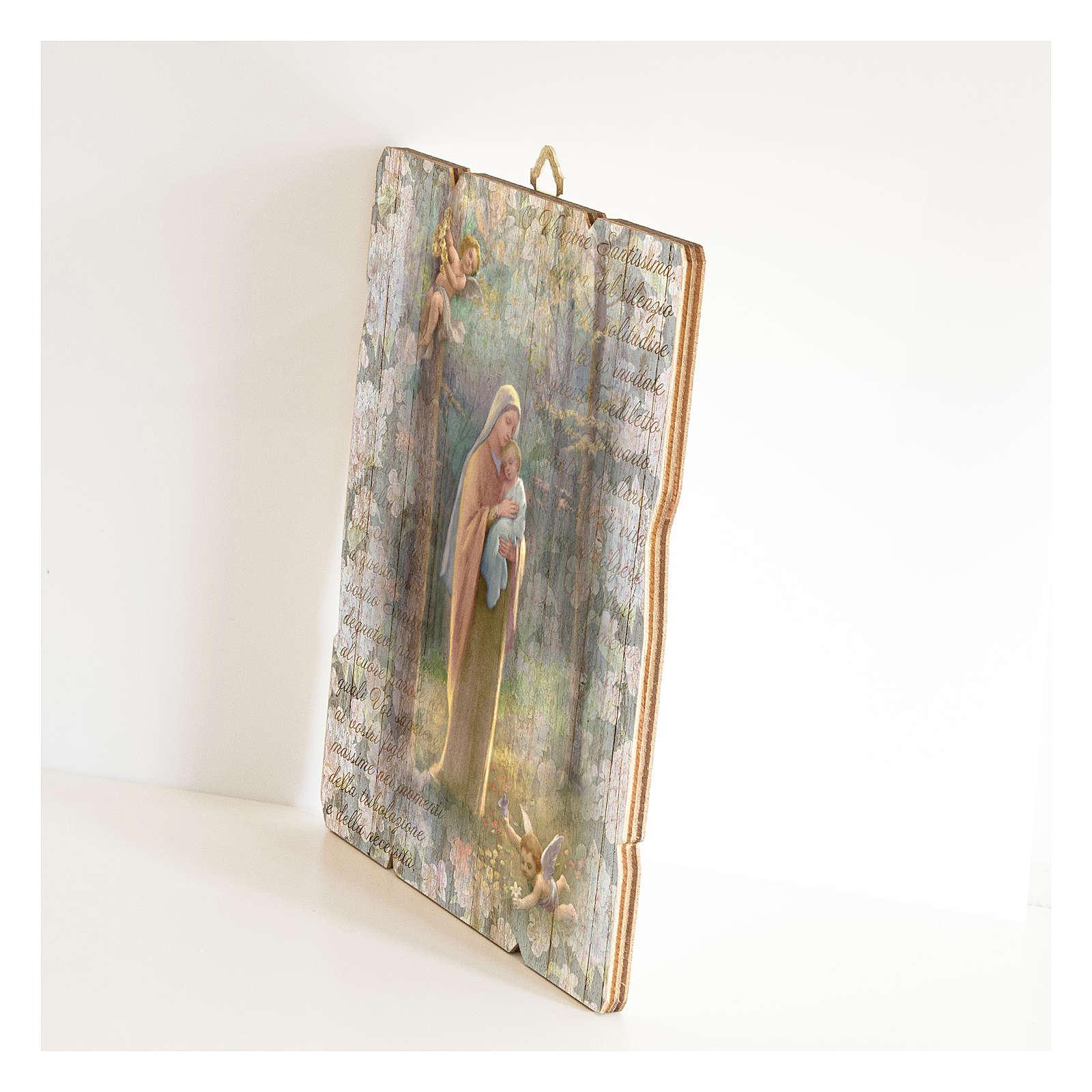 Quadro legno sagomato gancio retro Madonna del Bosco 3