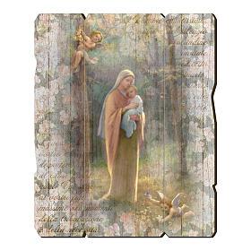 Quadro legno sagomato gancio retro Madonna del Bosco s1