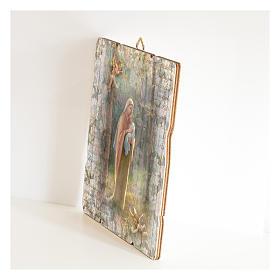 Quadro legno sagomato gancio retro Madonna del Bosco s2
