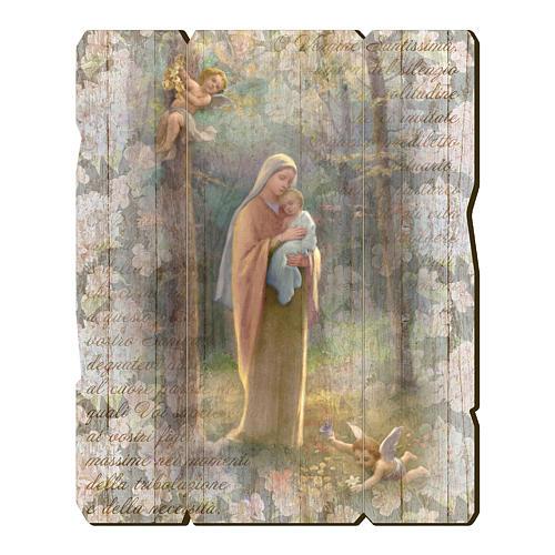 Quadro legno sagomato gancio retro Madonna del Bosco 1