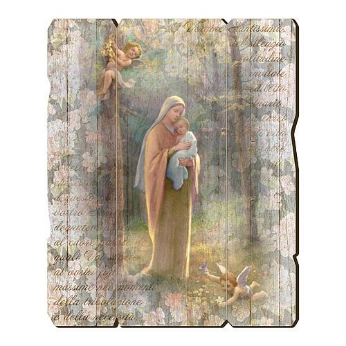 Quadro in Legno Sagomato gancio retro Madonna del Bosco 35x30 1