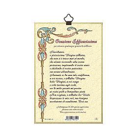 Stampa su legno Madonna miracolosa con Medaglie Orazione Efficacissima ITA s3
