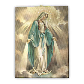 Cuadro sobre tela pictórica Virgen Milagrosa 25x20 cm s1