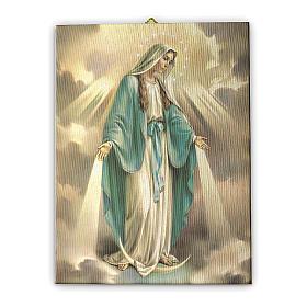 Quadri, stampe, codici miniati: Quadro su tela pittorica Madonna Miracolosa 25x20 cm