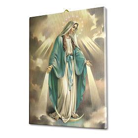 Quadro su tela pittorica Madonna Miracolosa 25x20 cm s2