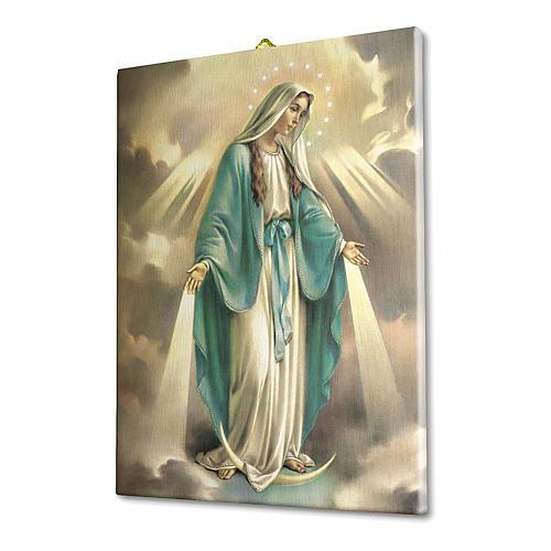 Quadro su tela pittorica Madonna Miracolosa 25x20 cm 2